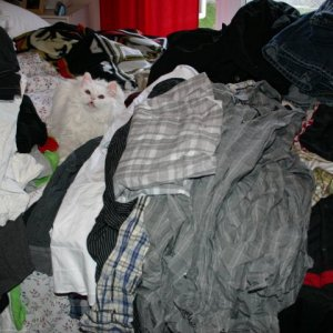 Ivory lost in Justin's clothes. I was washing it all before he got back from Iraq so it would be fresh.